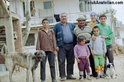 Turkish family and dogs